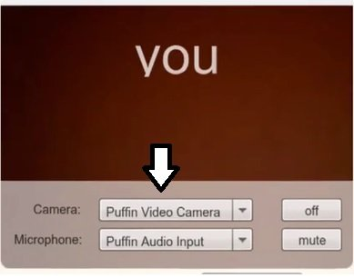 Choose Your Camera on Omegle Webcam